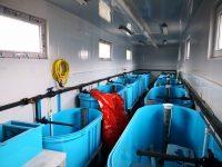 Бассейны-инкубаторы (5)